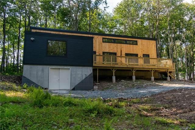 10 Lakewood Drive, Livingston Manor, NY 12758 (MLS #H6134058) :: Mark Boyland Real Estate Team
