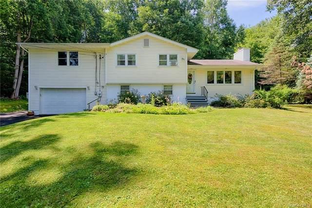 8 Van Brook Drive, Stormville, NY 12582 (MLS #H6134069) :: Corcoran Baer & McIntosh