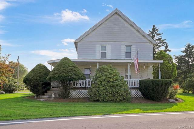 203 County Route 22, Johnson, NY 10933 (MLS #H6134120) :: Signature Premier Properties