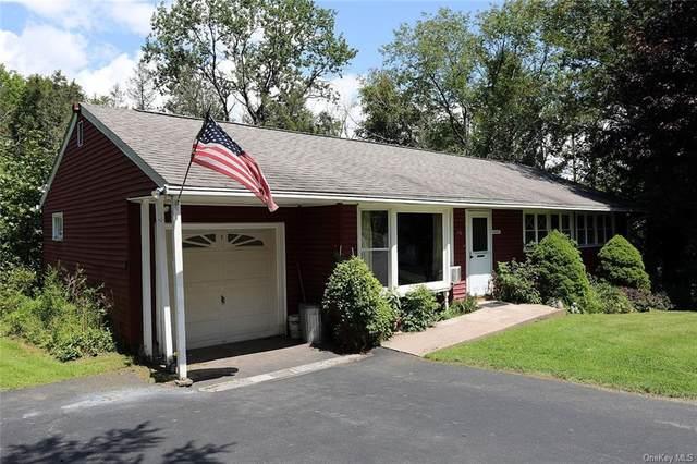 48 County Road 164, Jeffersonville, NY 12748 (MLS #H6134150) :: Howard Hanna Rand Realty