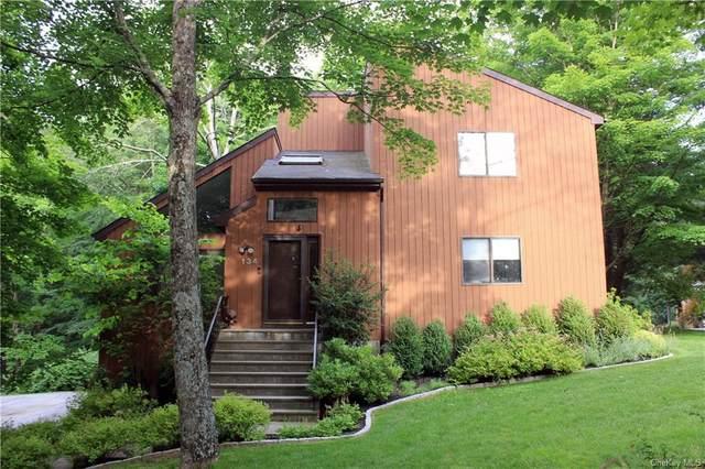 134 Mitchell Road, Somers, NY 10589 (MLS #H6134154) :: Goldstar Premier Properties