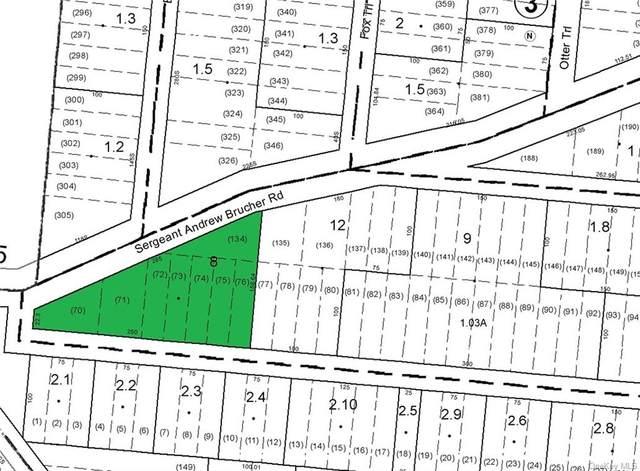 Lot 8 Sgt Andrew Brucher Road, Bethel, NY 12720 (MLS #H6134179) :: Corcoran Baer & McIntosh