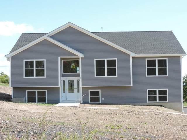 27 Meadow View Drive, Marlboro, NY 12542 (MLS #H6134184) :: Team Pagano