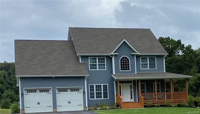 345 Devon Farms Road, Stormville, NY 12582 (MLS #H6134188) :: Cronin & Company Real Estate