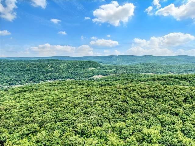 Pine Hill Road, Tuxedo Park, NY 10987 (MLS #H6134235) :: Goldstar Premier Properties