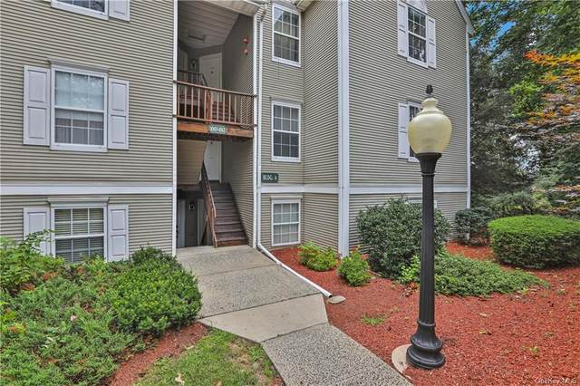 1010 Washington Green, New Windsor, NY 12553 (MLS #H6134236) :: Goldstar Premier Properties