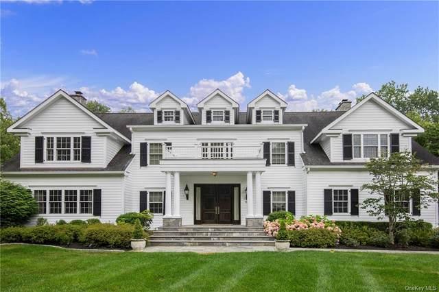 5 Apple Mill Lane, North Salem, NY 10560 (MLS #H6134237) :: Goldstar Premier Properties