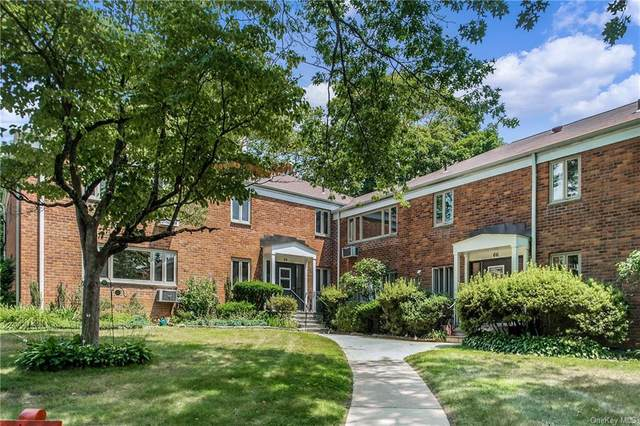 64 Lawrence Court A, White Plains, NY 10603 (MLS #H6134253) :: Laurie Savino Realtor