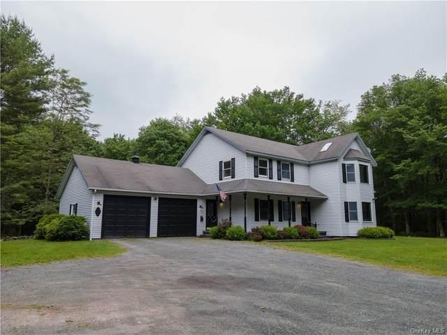 325 Hartwood Road, Forestburgh, NY 12777 (MLS #H6134366) :: Goldstar Premier Properties