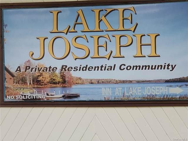 40 Lena Road, Forestburgh, NY 12777 (MLS #H6134397) :: Signature Premier Properties