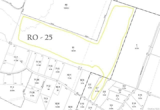 Little Ireland Road, Livingston Manor, NY 12758 (MLS #H6134411) :: Signature Premier Properties