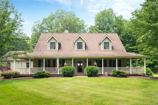 79 Mountain Road, Pine Bush, NY 12566 (MLS #H6134431) :: Signature Premier Properties