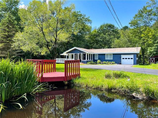 792 Cattail Road, Livingston Manor, NY 12758 (MLS #H6134475) :: Signature Premier Properties
