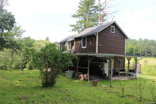 89 Bernas Road, Cochecton, NY 12726 (MLS #H6134565) :: Signature Premier Properties