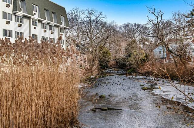 1035 E Boston Post Road L-1, Mamaroneck, NY 10543 (MLS #H6134601) :: Goldstar Premier Properties
