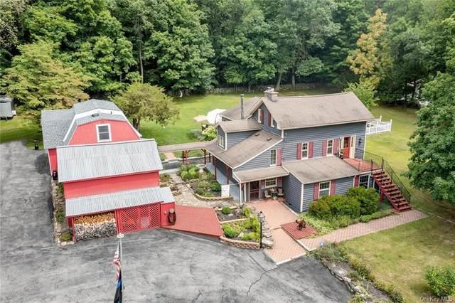 123 Orrs Mills Road, Salisbury Mills, NY 12577 (MLS #H6134610) :: Signature Premier Properties