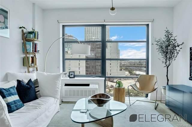1333 Jackson Avenue, Long Island City, NY 11101 (MLS #H6134647) :: Goldstar Premier Properties