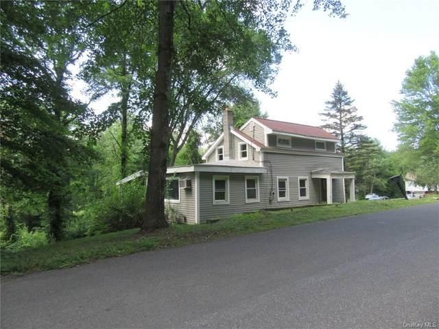 457 N Elting Corners Road, Highland, NY 12528 (MLS #H6134708) :: Goldstar Premier Properties