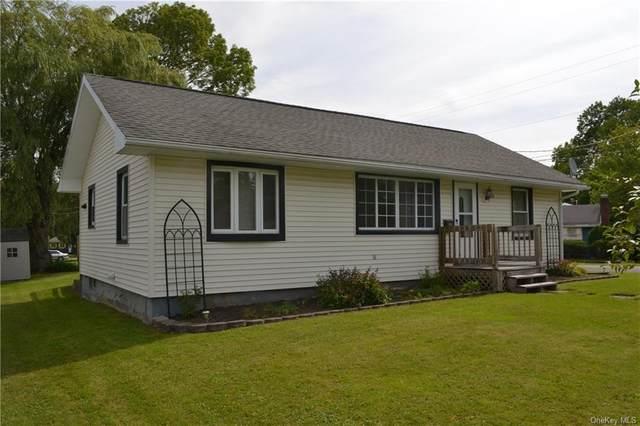 99 Wawanda Avenue, Liberty, NY 12754 (MLS #H6134748) :: Signature Premier Properties