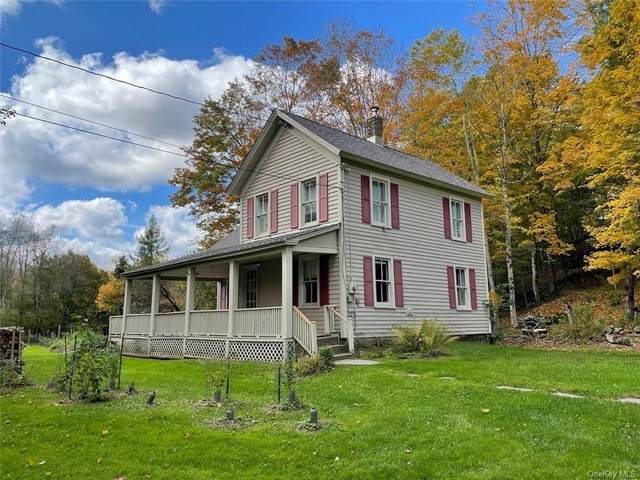 57 Grooville Road, Livingston Manor, NY 12758 (MLS #H6134898) :: Cronin & Company Real Estate