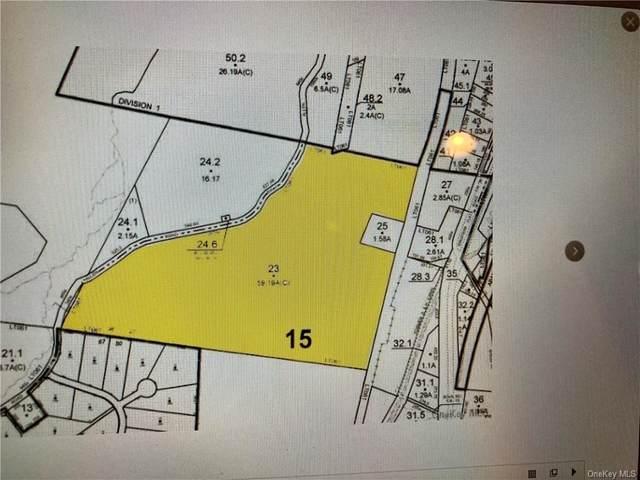 Allen Rd, Wurtsboro, NY 12790 (MLS #H6134939) :: Goldstar Premier Properties