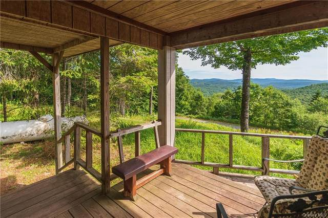 782 Anderson Road, Parksville, NY 12768 (MLS #H6134976) :: Signature Premier Properties
