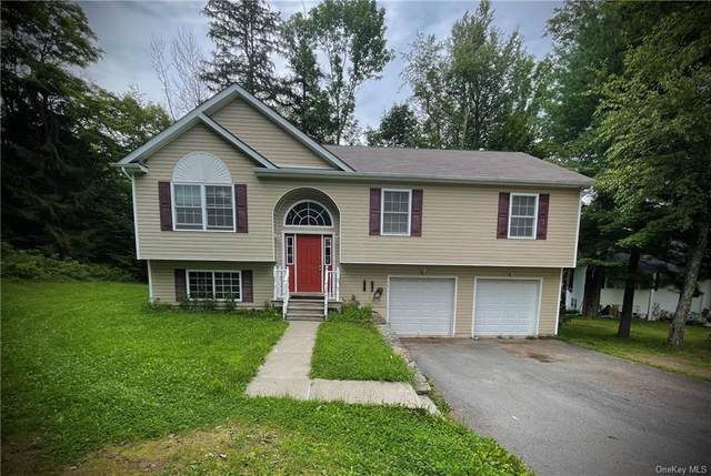14 Varnell Road, Monticello, NY 12701 (MLS #H6135037) :: Signature Premier Properties