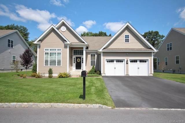 6 W Van Buren Way, Hopewell Junction, NY 12533 (MLS #H6135164) :: Team Pagano