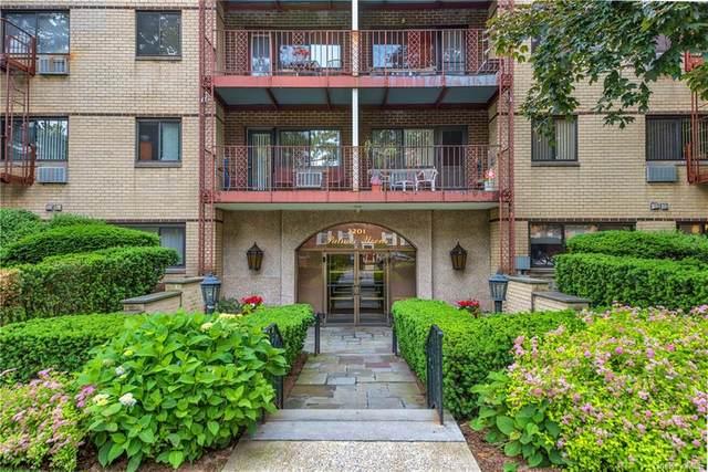 2201 Palmer Avenue 3R, New Rochelle, NY 10801 (MLS #H6135196) :: Laurie Savino Realtor