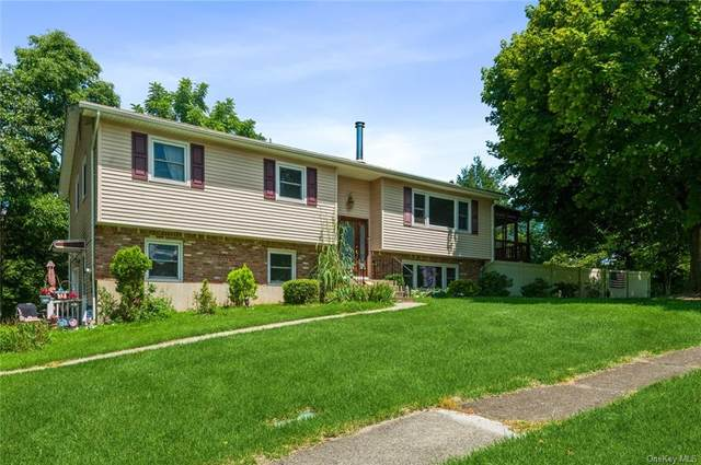 21 Renie Lane, Blauvelt, NY 10913 (MLS #H6135245) :: Corcoran Baer & McIntosh