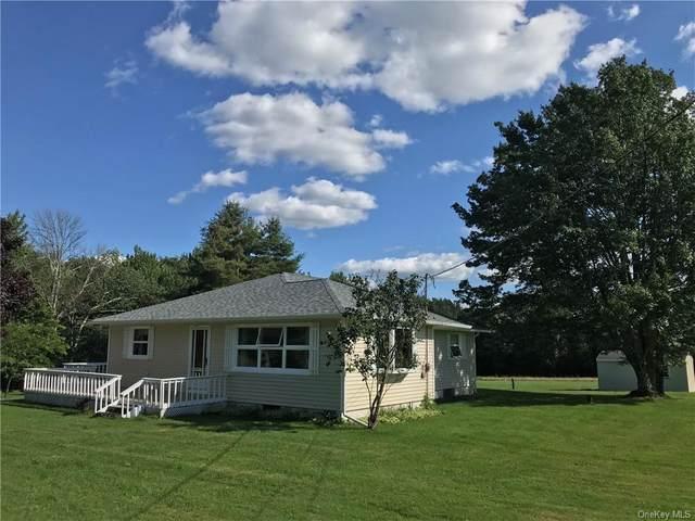 139 Bowers Road, Hurleyville, NY 12747 (MLS #H6135274) :: Signature Premier Properties