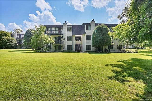 207 Drew Lane, Carmel, NY 10512 (MLS #H6135293) :: Goldstar Premier Properties