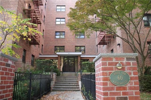 60 White Oak Street 4-E, New Rochelle, NY 10801 (MLS #H6135295) :: Kendall Group Real Estate | Keller Williams
