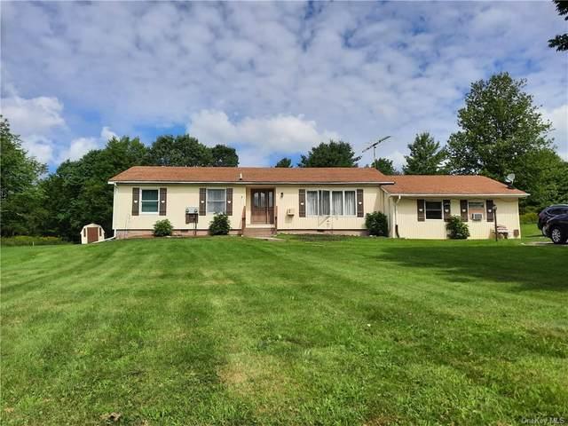 158 Pine Road, Woodbourne, NY 12788 (MLS #H6135443) :: Goldstar Premier Properties