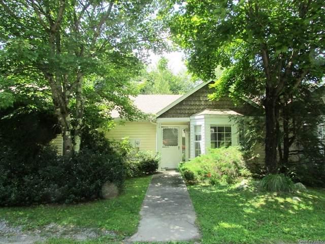 113 Hidden Ridge Drive, Monticello, NY 12701 (MLS #H6135579) :: Goldstar Premier Properties