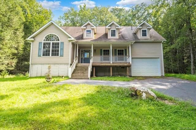 66 Highland Lake Road, Eldred, NY 12732 (MLS #H6135619) :: Goldstar Premier Properties