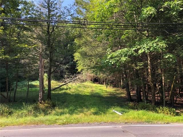 70 Highland Lake Road, Highland Lake, NY 12743 (MLS #H6135621) :: Goldstar Premier Properties