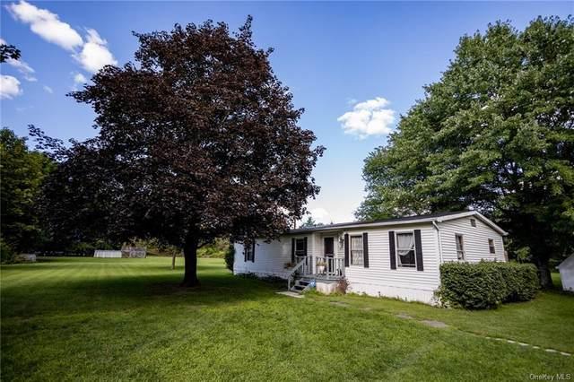 12 Carolyn Drive, New Paltz, NY 12561 (MLS #H6135693) :: Kendall Group Real Estate | Keller Williams