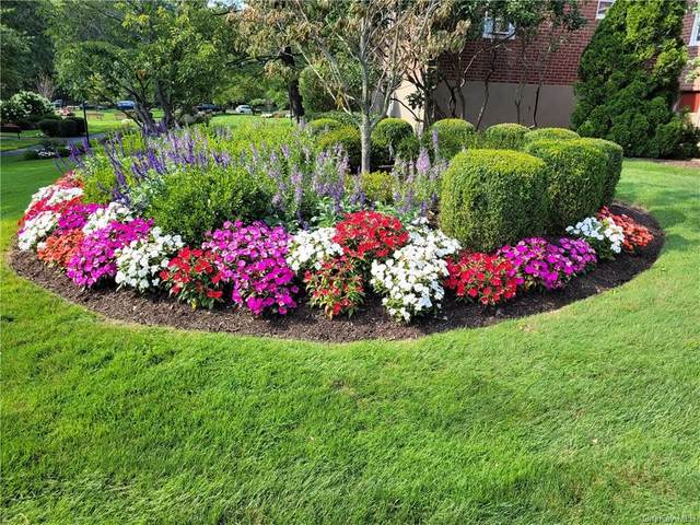 9 Bryant Crescent 2A, White Plains, NY 10605 (MLS #H6135718) :: McAteer & Will Estates | Keller Williams Real Estate