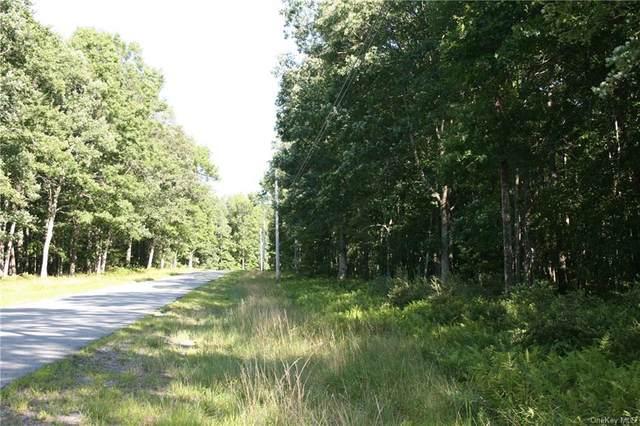 Cushetunk Drive, Cochecton, NY 12726 (MLS #H6136006) :: Cronin & Company Real Estate