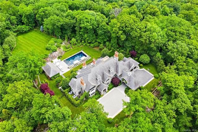 3 Terrace Circle, Armonk, NY 10504 (MLS #H6136105) :: Goldstar Premier Properties