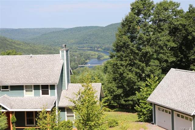 116 Froehlich Drive, Callicoon, NY 12723 (MLS #H6136141) :: Goldstar Premier Properties