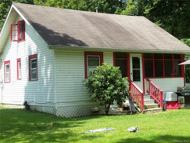 18-26 Blue Heron Lane, Staatsburg, NY 12580 (MLS #H6136204) :: Cronin & Company Real Estate