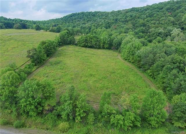 Lower Pasture Overlook Circle, Fremont Center, NY 12736 (MLS #H6136267) :: McAteer & Will Estates | Keller Williams Real Estate