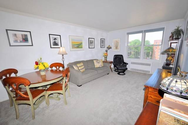 517 Riverdale Avenue 3D, Yonkers, NY 10705 (MLS #H6136448) :: Laurie Savino Realtor