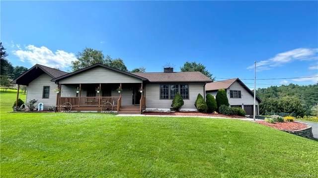 14 Tyler Road, Narrowsburg, NY 12764 (MLS #H6136543) :: Cronin & Company Real Estate