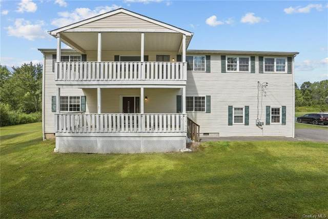 243 State Route 32 S, New Paltz, NY 12561 (MLS #H6136605) :: McAteer & Will Estates | Keller Williams Real Estate