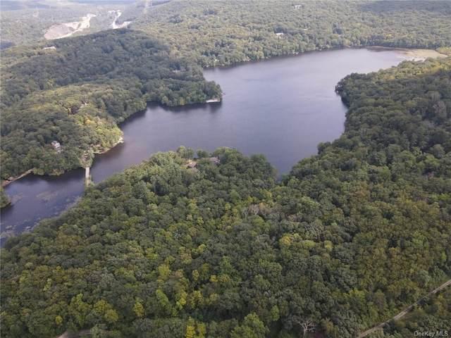 12 Pierson Lakes Road, Sloatsburg, NY 10974 (MLS #H6136790) :: McAteer & Will Estates | Keller Williams Real Estate