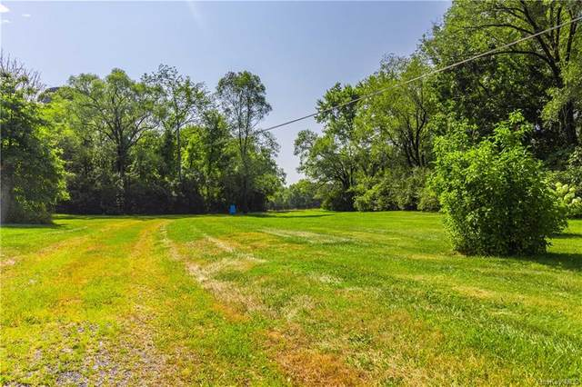 468 State Route 32 Route N, New Paltz, NY 12561 (MLS #H6136816) :: McAteer & Will Estates | Keller Williams Real Estate