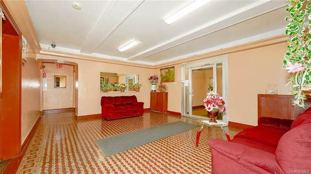 463 E 178th Street 2F, Bronx, NY 10456 (MLS #H6136852) :: McAteer & Will Estates | Keller Williams Real Estate